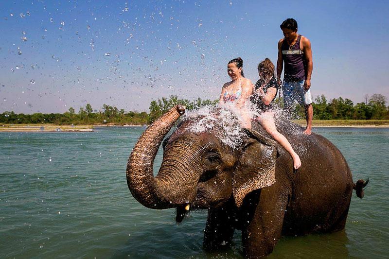 Elephant Festival kicks off in Nepal's tourism hub Chitwan